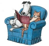 dog and cat sitting on easy chair reading a book