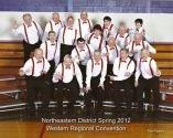 Men in Harmony singing group