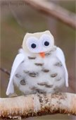 pine cone and cotton owl craft