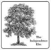 Gardening - Elm Tree