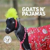 black goat wearing red flannel pajamas